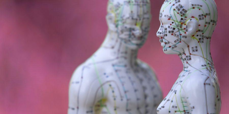 Männliches und weibliches Akupunkturmodell vor rotem Hintergrun